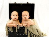 Twin Baby Boys Portrait